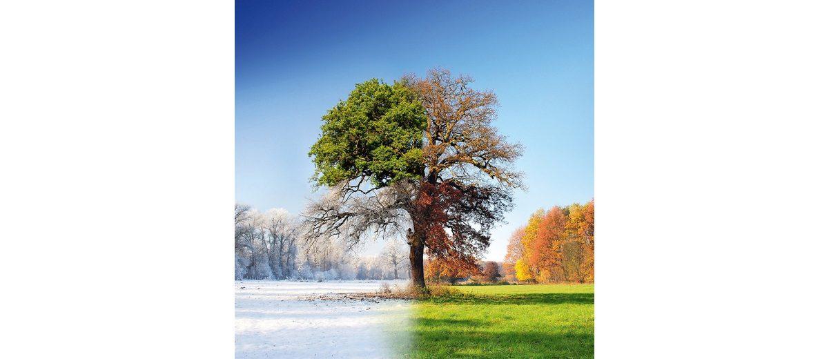 Glasbild, EUROGRAPHICS, »4 Seasons«, 50/50 cm
