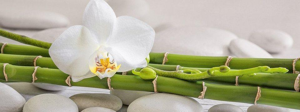 Glasbild, EUROGRAPHICS, »White Bambo«, 80/30 cm in grün