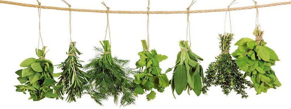 Glasbild, EUROGRAPHICS, »Hanging Herbs«, 80/30 cm in grün