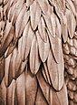 living walls Fototapete »ARTist Feathers«, (Set, 2 St), Palmenblätter, Vlies, glatt, Bild 1