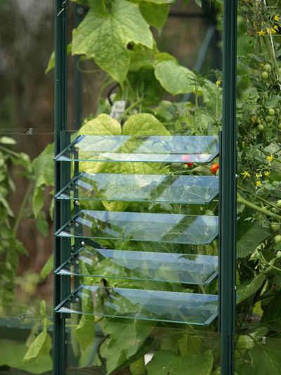 Vitavia Fenster »Lamellenfenster«, grün, BxH: 61x45 cm