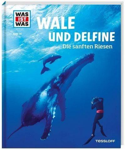 Gebundenes Buch »Wale und Delfine. Die sanften Riesen / Was ist...«