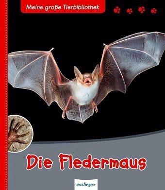 Gebundenes Buch »Die Fledermaus / Meine große Tierbibliothek«