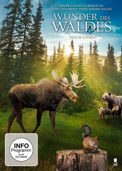 DVD »Wunder des Waldes«