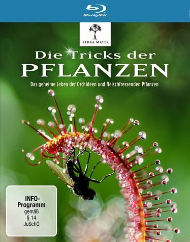 Blu-ray »Die Tricks der Pflanzen«