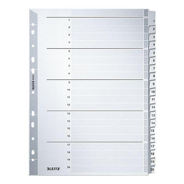 Leitz Kartonregister 1-20 A4 grau