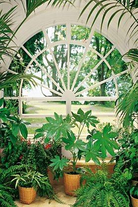 Wandtapete, Home affaire, »Wintergarden«, 183/254 cm in grün
