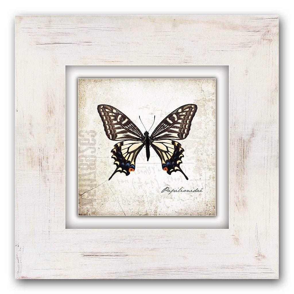 Home affaire Holzbild »Brauner Schmetterling«, 40/40 cm
