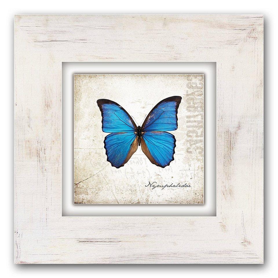 Holzbild, Home affaire, »Blauer Schmetterling«, 40/40 cm in creme/blau