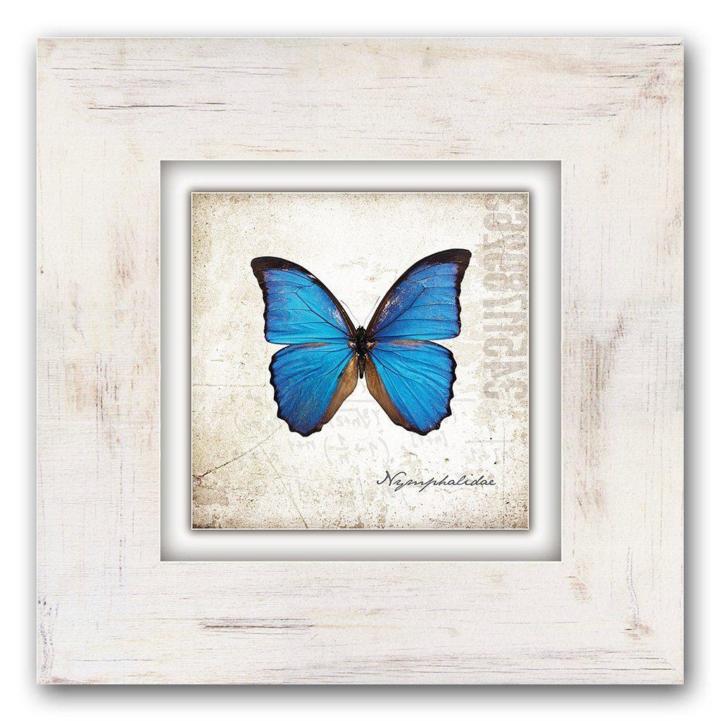 Home affaire Holzbild »Blauer Schmetterling«, 40/40 cm