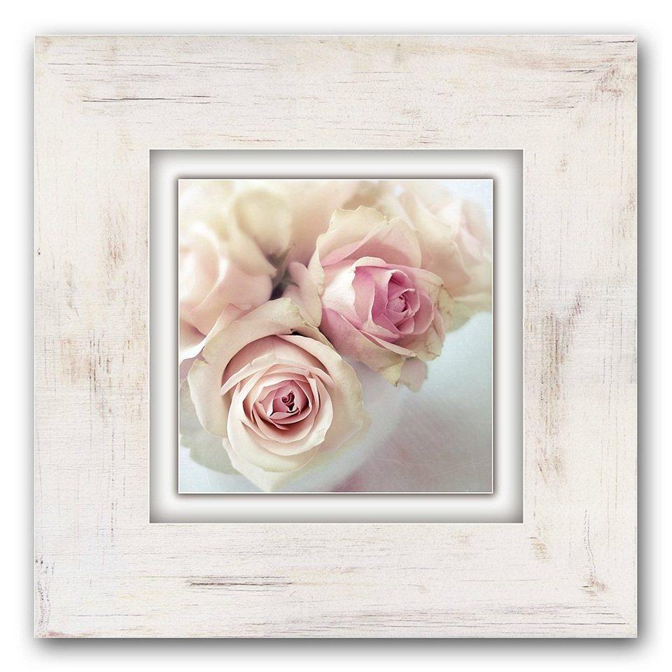 Holzbild, Home affaire, »Rosen«, 40/40 cm in creme/rosa