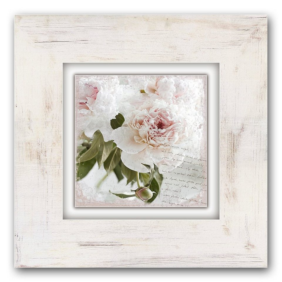 Holzbild, Home affaire, »Rosa Blume«, 40/40 cm in creme/rosa