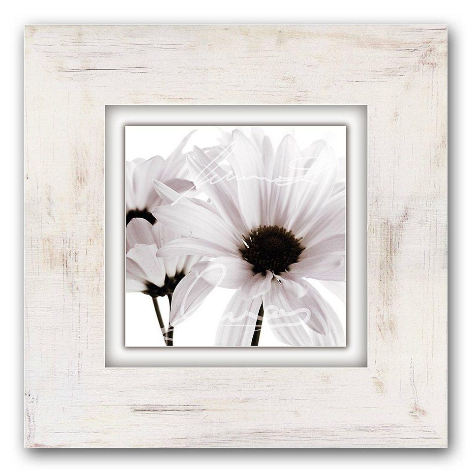 Holzbild, Home affaire, »Weiße Blüten«, 40/40 cm in creme/weiß