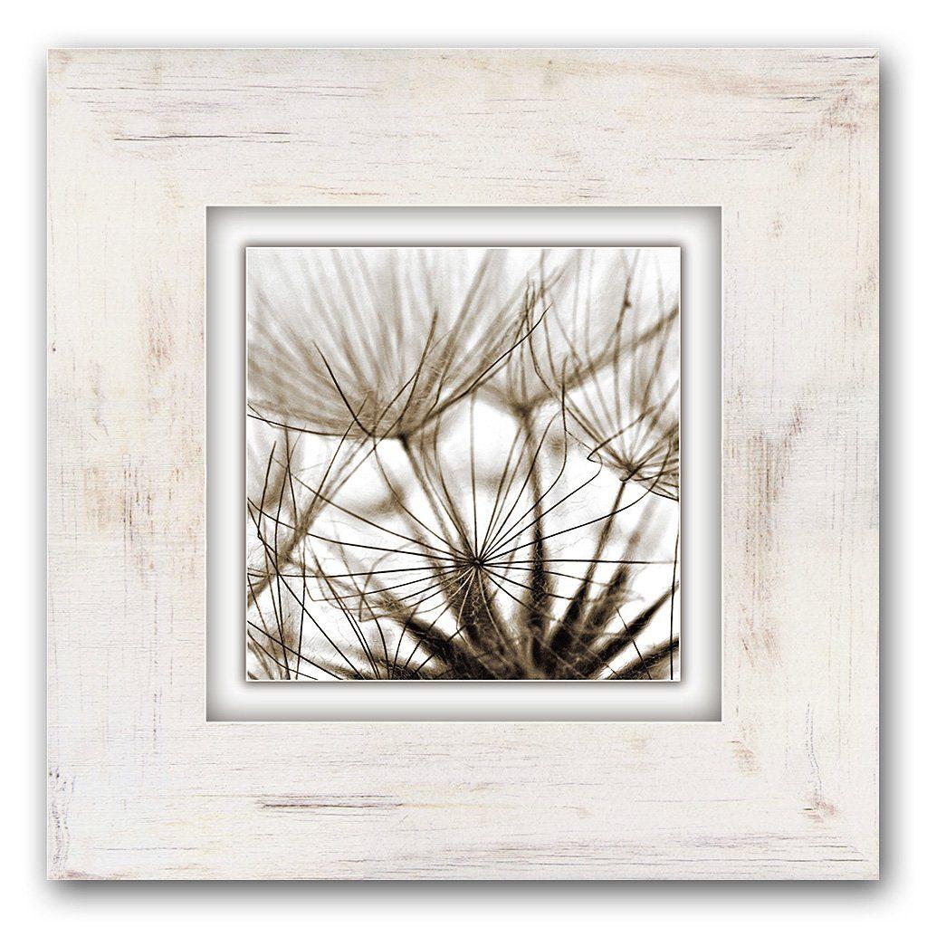 Home affaire Holzbild »Pusteblumen«, 40/40 cm