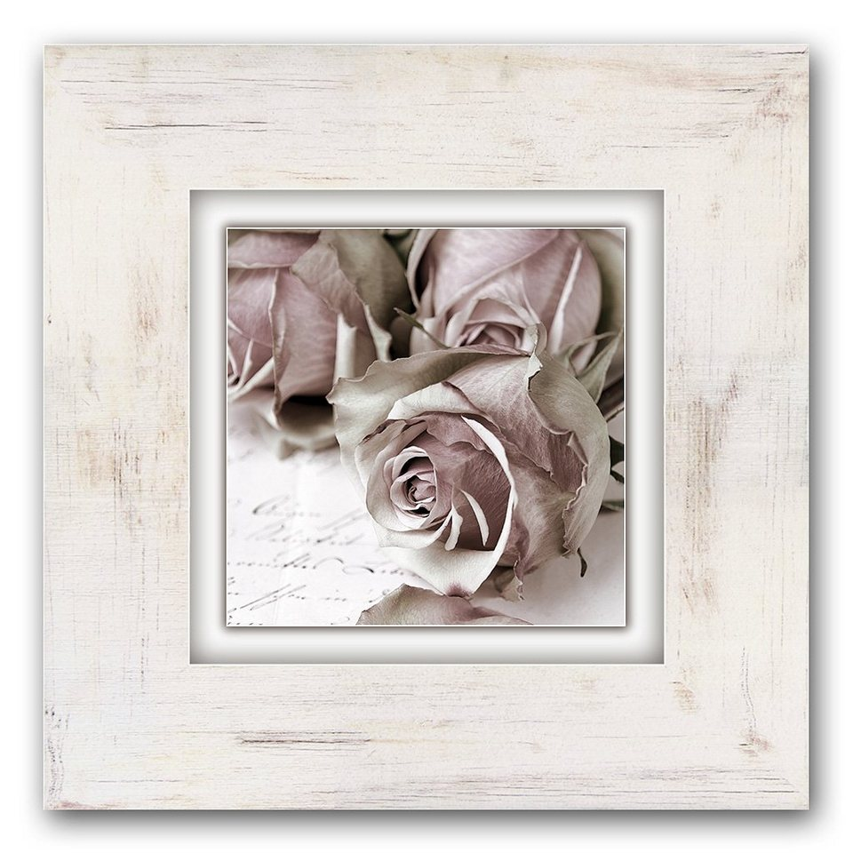 Holzbild, Home affaire, »Rosen«, 40/40 cm in creme
