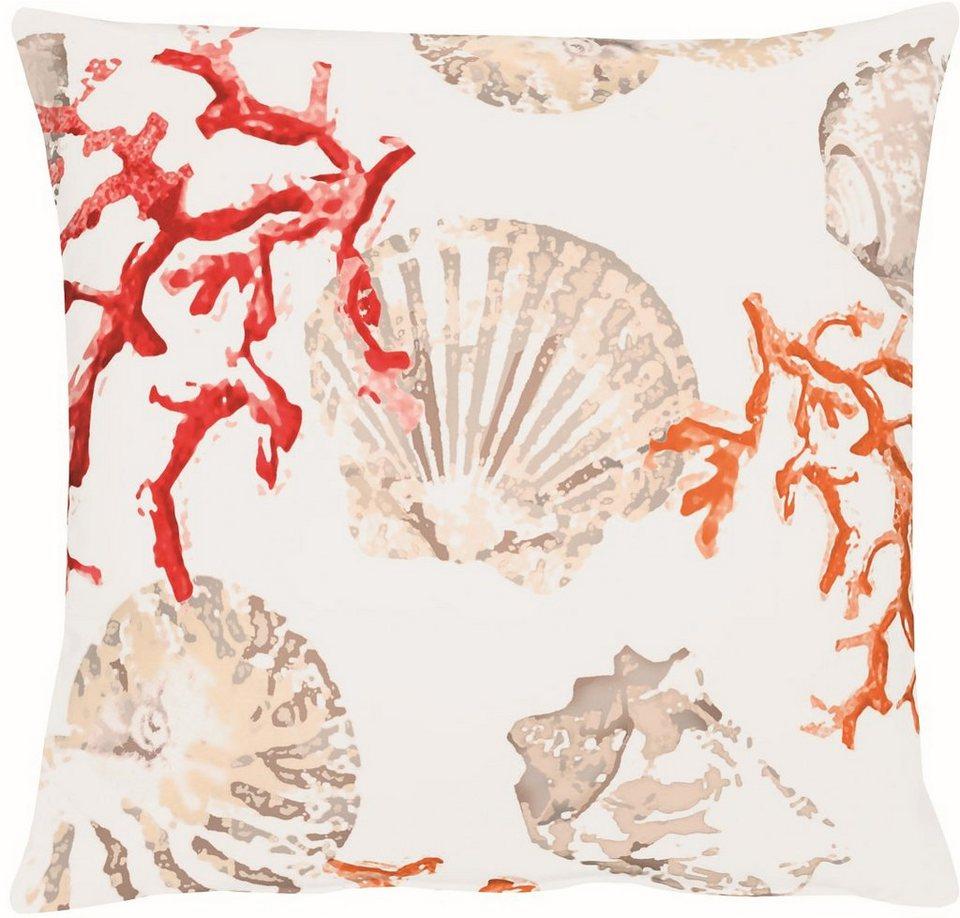 Dekokissen 4056 Digitaldruck Koralle Muschel Apelt Online Kaufen