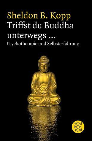 Broschiertes Buch »Triffst du Buddha unterwegs...«
