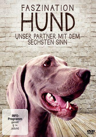 DVD »Faszination Hund - Unser Partner mit dem...«