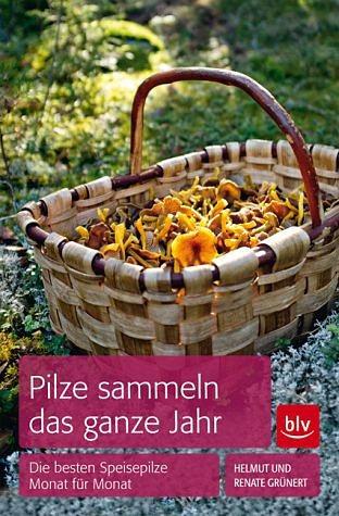 Broschiertes Buch »Pilze sammeln das ganze Jahr«