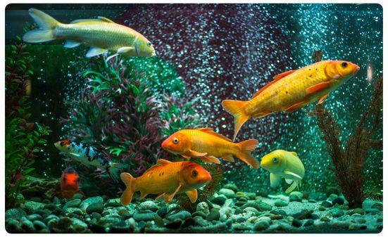 DesFoli Wandtattoo »Fische Aquarium R2062«