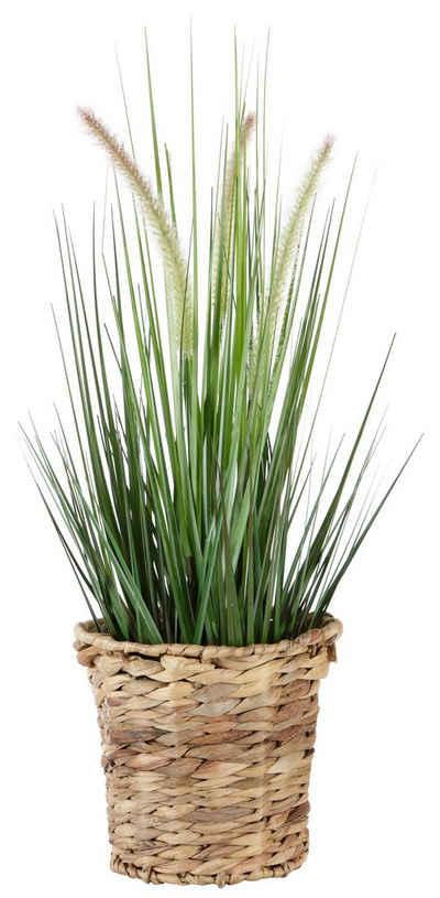 Kunstpflanze »Gras« Fuchsschwanzgras, I.GE.A., Höhe 90 cm