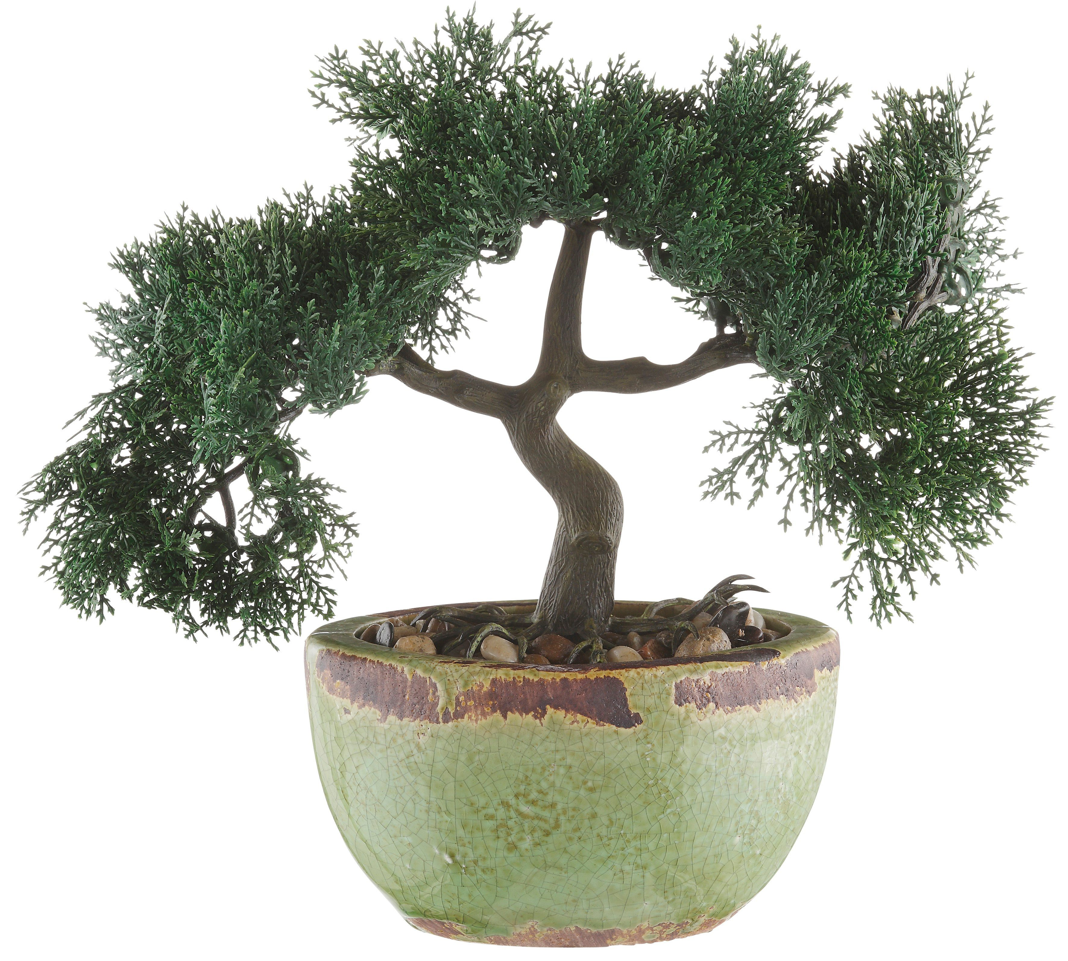Kunstplanze, Home affaire, »Bonsai« (2er-Set)