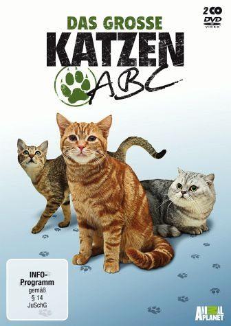 DVD »Das große Katzen-ABC (2 Discs)«