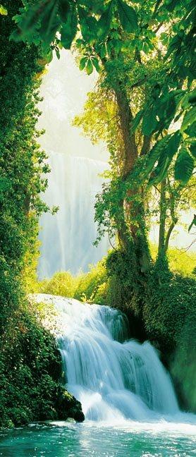 Türposter, Home affaire, »Zaragoza Falls«, 86/200 cm in grün