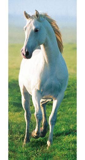 Türposter, Home affaire, »White Horse«, 86/200 cm
