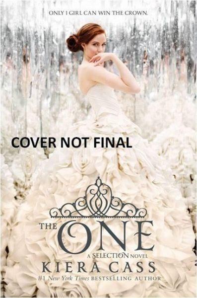 Broschiertes Buch »The One«