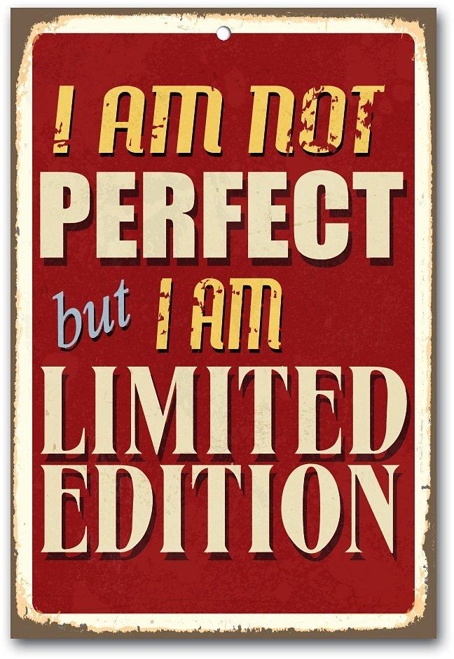 Stahlschild, Home affaire, »I am not perfect …«, Maße (B/H): ca. 30/45 cm in braun/beige