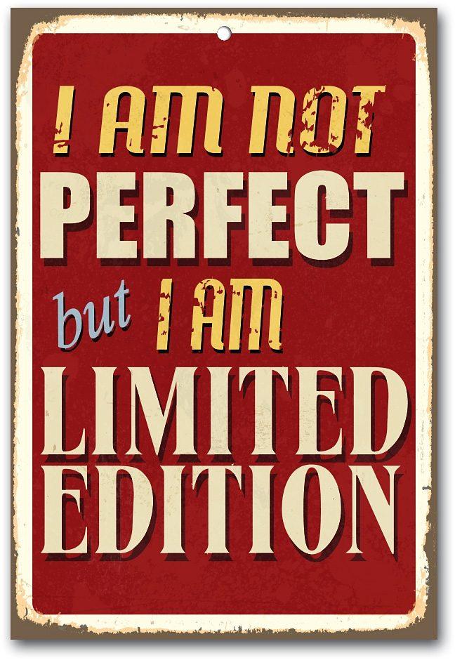 Home affaire Stahlschild »I am not perfect …«, Maße (B/H): ca. 30/45 cm