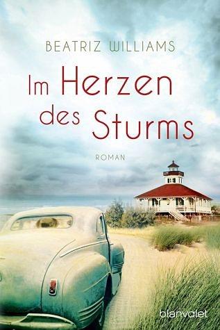Broschiertes Buch »Im Herzen des Sturms«