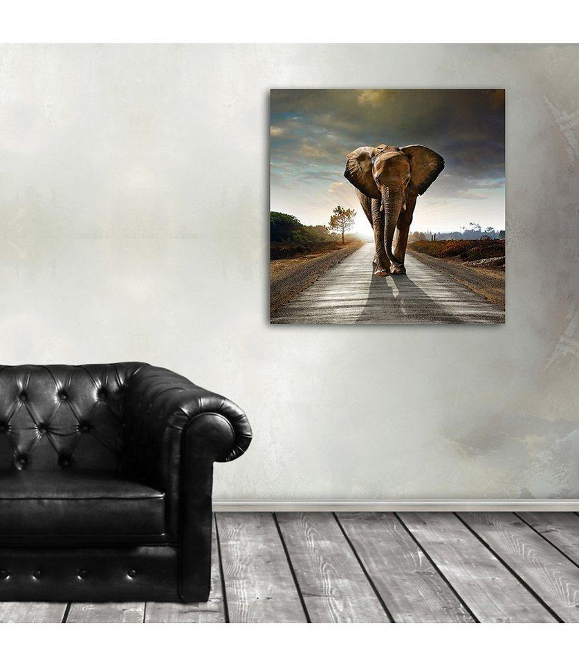 Premium collection by Home affaire Acrylglasbild »Elefant«, 50/50 cm in braun