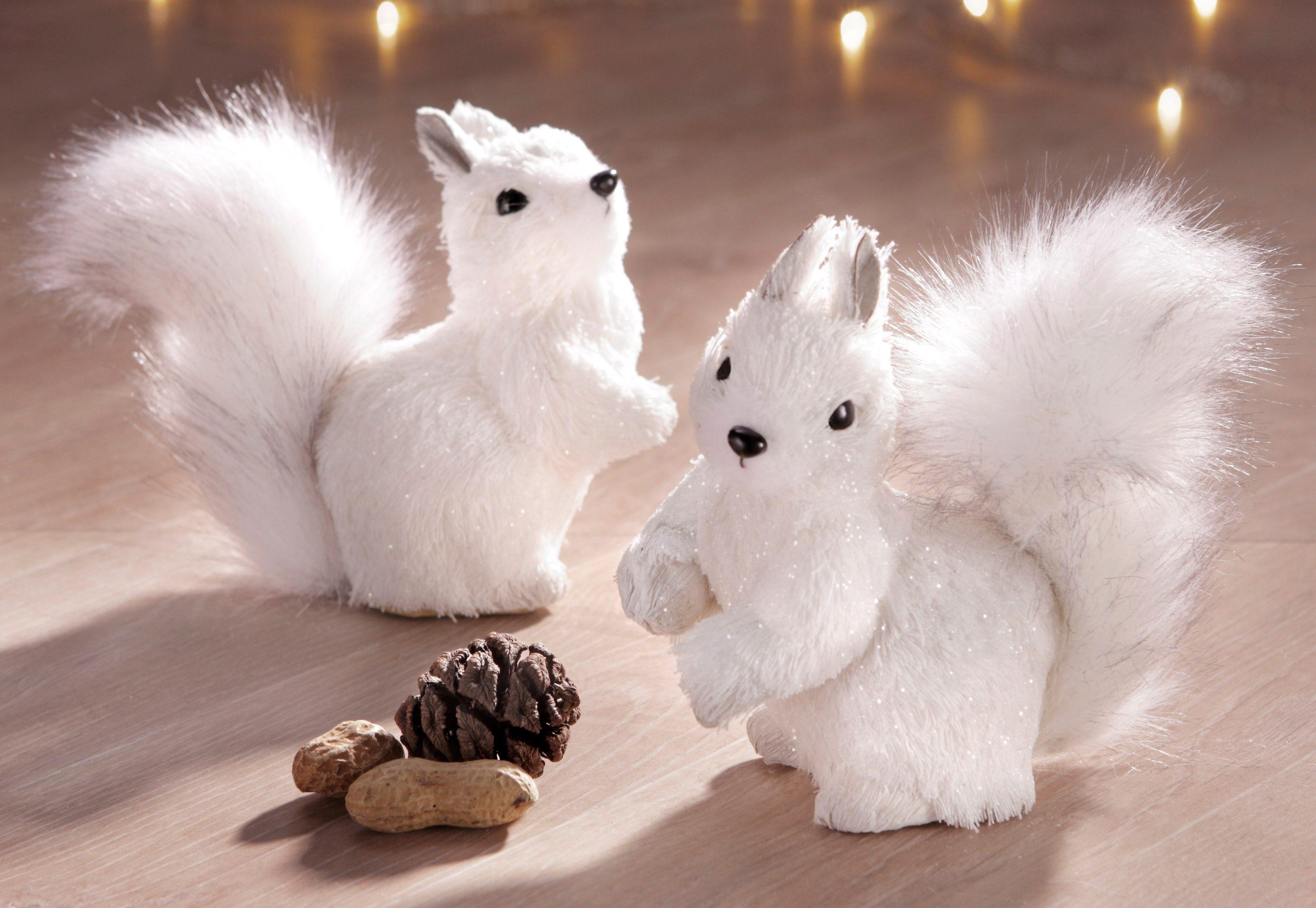Set: Eichhörnchen (2tlg.)