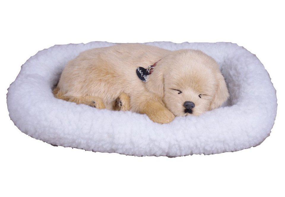 Plüschtier, Perfect-Petzzz® Hund, »Golden Retriever« in Golden Retriver