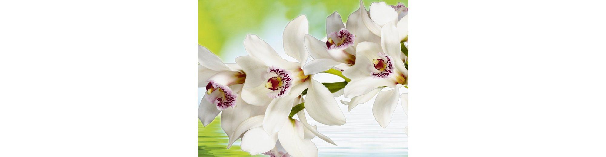 Leinwandbild auf Holzrahmen, Home affaire, »Weiße Orchidee«, 80/60 cm