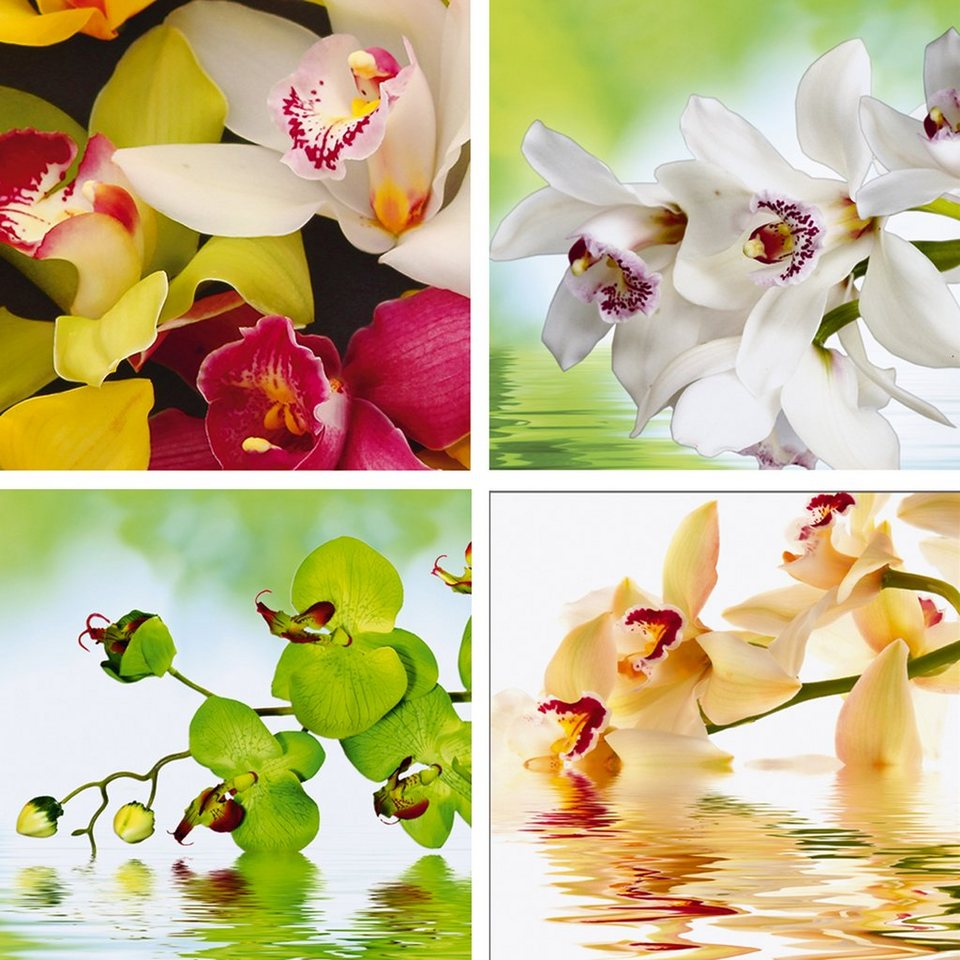 Home Affaire Leinwandbild Meer Von Orchideen Blumen Set 4x 30