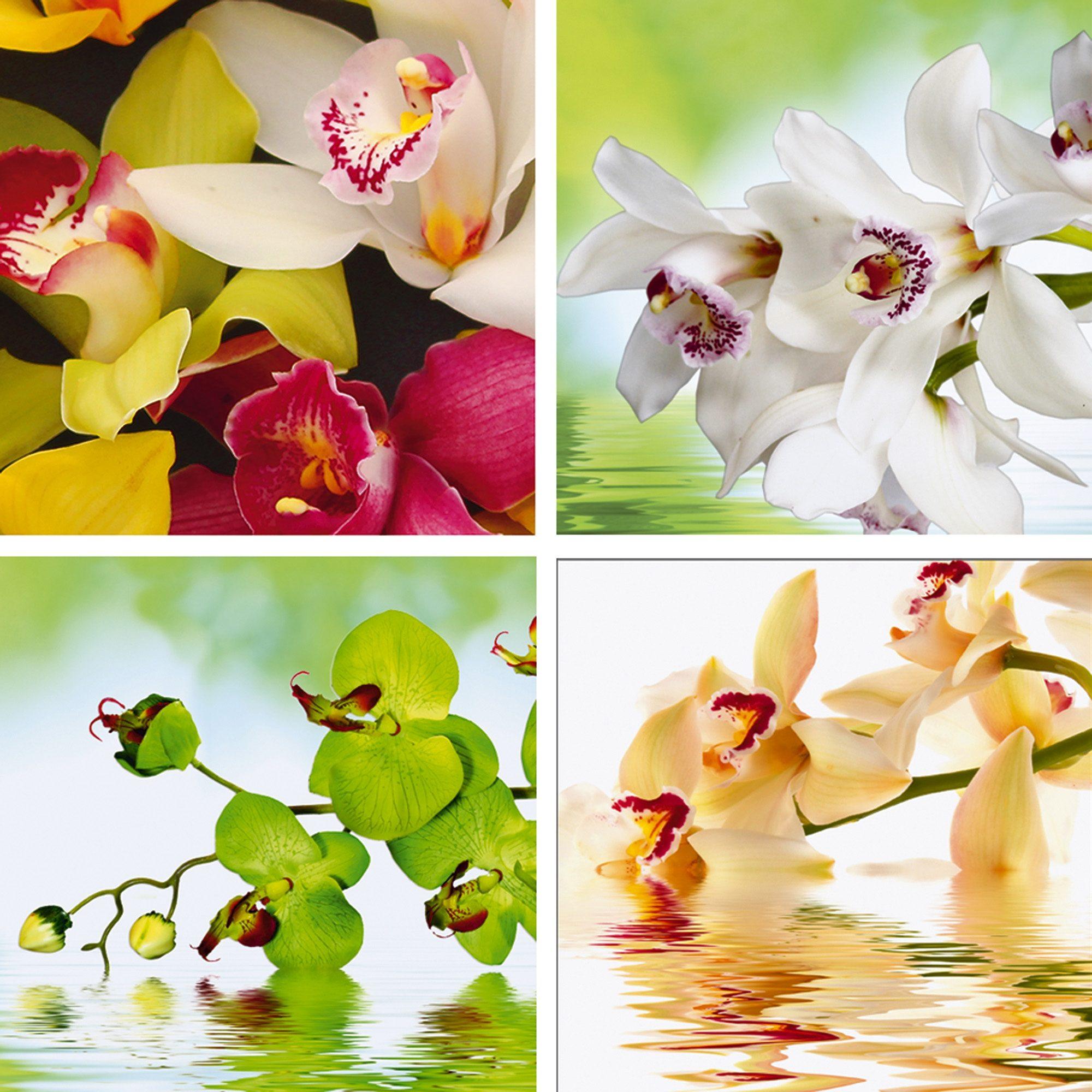 Home affaire Leinwandbild »Meer von Orchideen«, Blumen (Set), 4x 30/30 cm