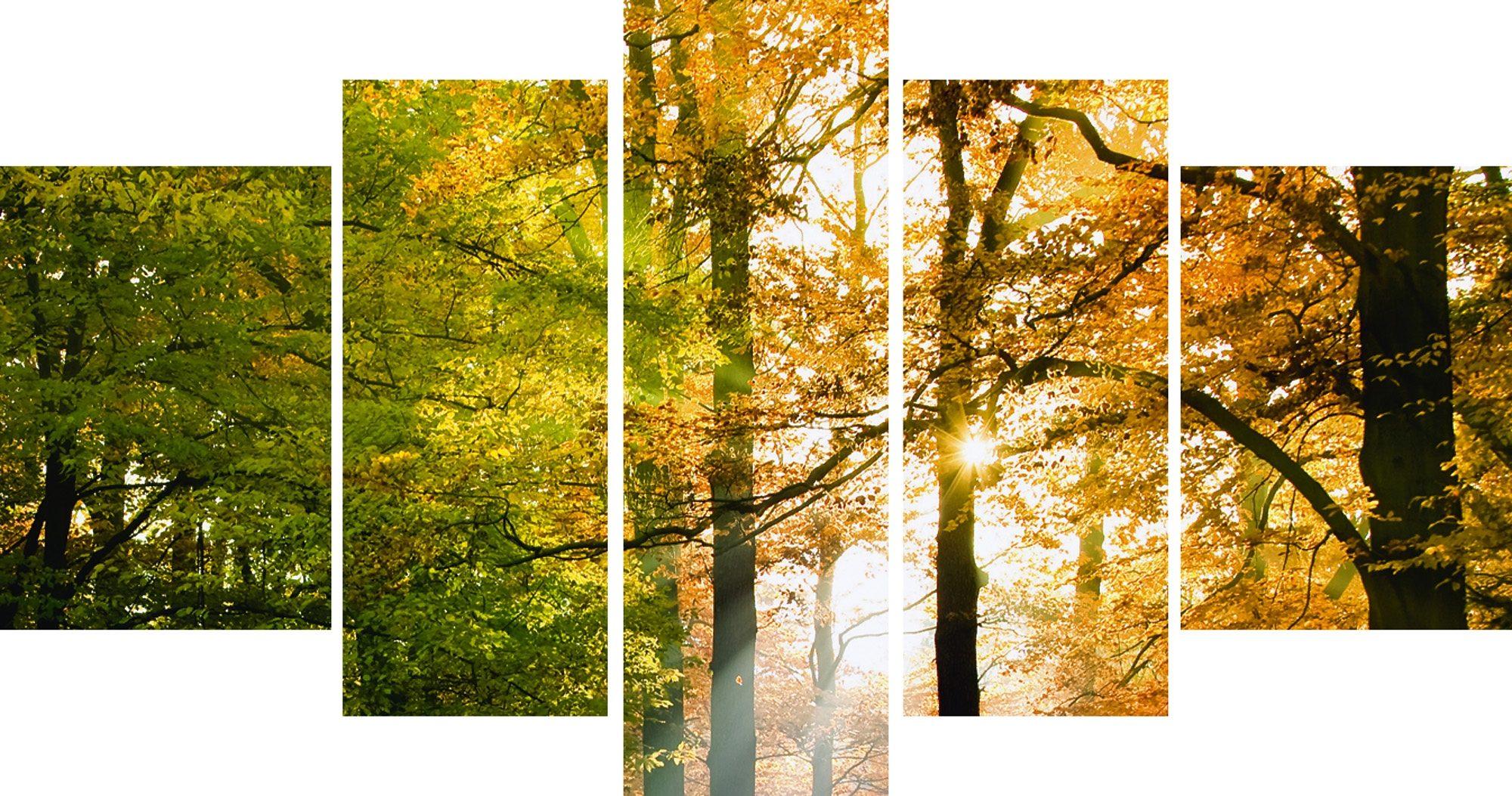 Leinwandbild, Home affaire, »Schöner Herbsttag«, 5tlg., 100/60 cm