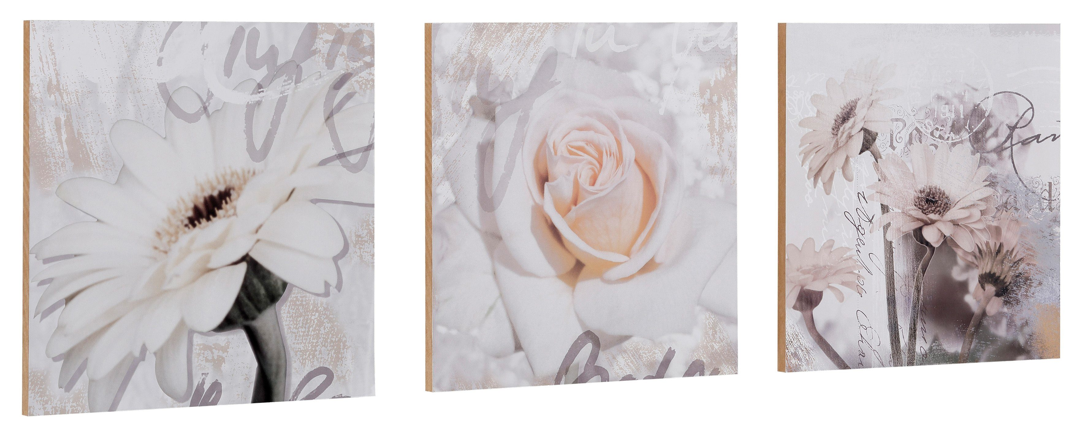 Home affaire Kunstdruck »S., D.: Gerberas Detail«, Blumen, 3-tlg., je 29/29 cm