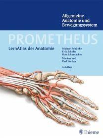 Gebundenes Buch »PROMETHEUS Allgemeine Anatomie und...«