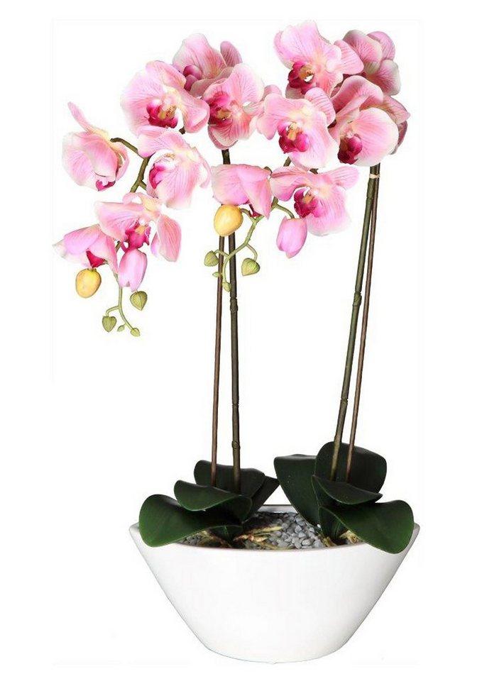 Home affaire Kunstblume »Deko-Orchidee« in pink