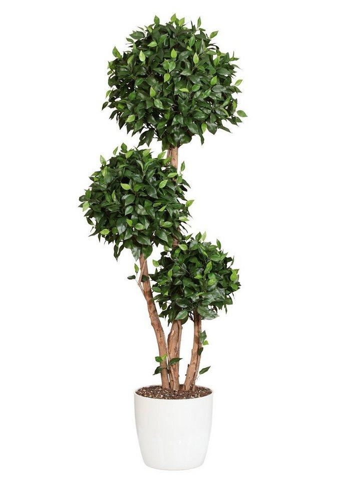 Home affaire Kunstpflanze »Ficuskugelbaum« in grün