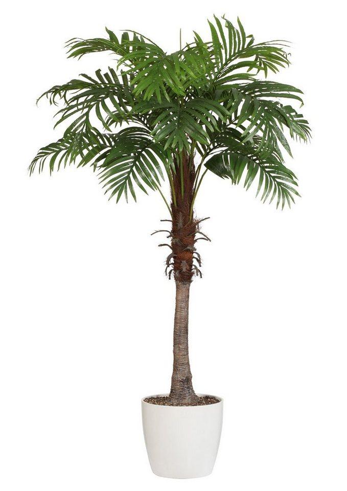 Home affaire Kunstpflanze »Arecapalme« in grün