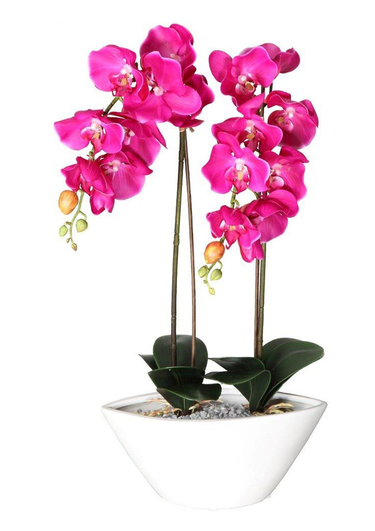 Home affaire Kunstblume »Deko-Orchidee«