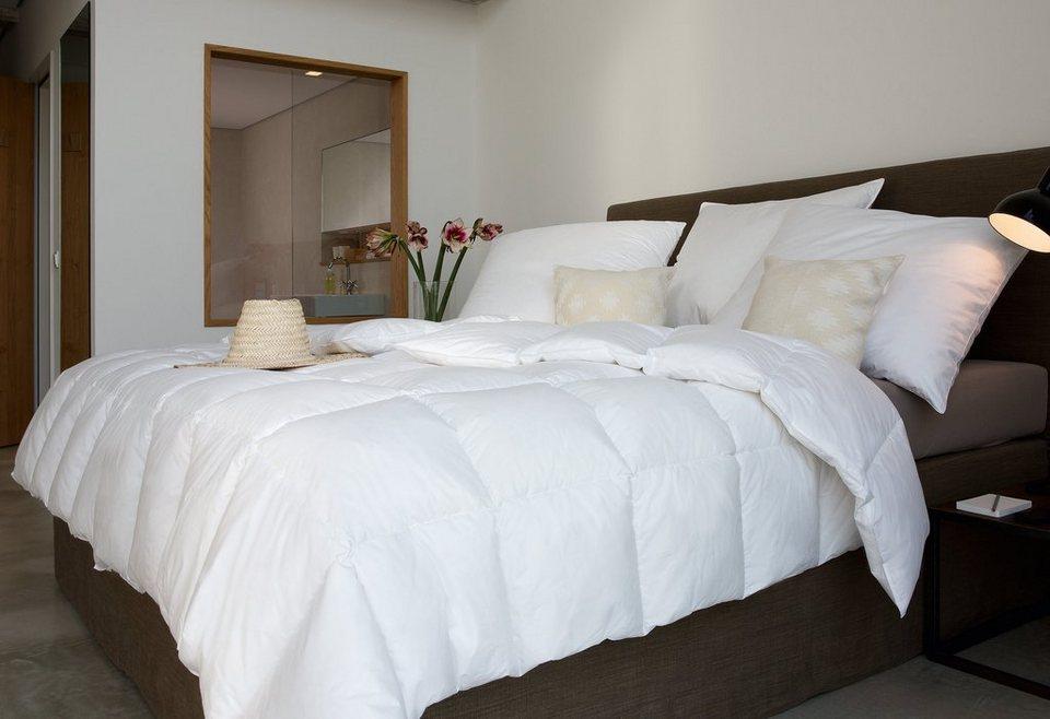 g nsedaunenbettdecke moments centa star normal f llung 90 g nsedaunen 10 g nsefedern. Black Bedroom Furniture Sets. Home Design Ideas