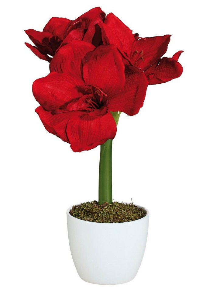 Home affaire Kunstblume »Amaryllis« (2 Stck.) in rot