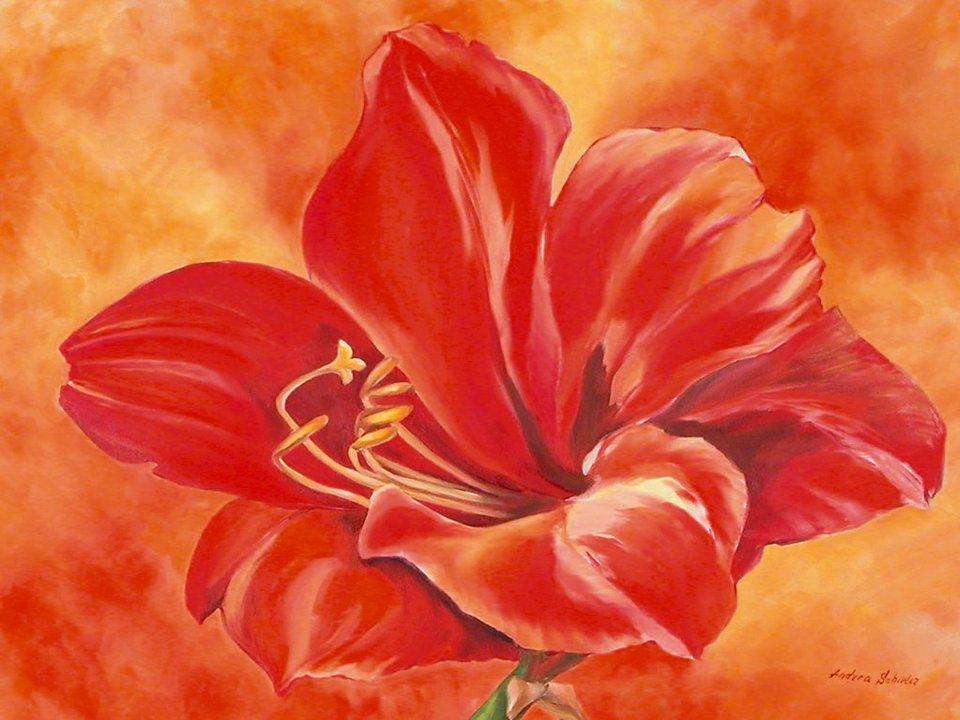 Bild, Kunstdruck, Home affaire, »Andrea Schieler: Amaryllis«, 79/57 cm in Rot