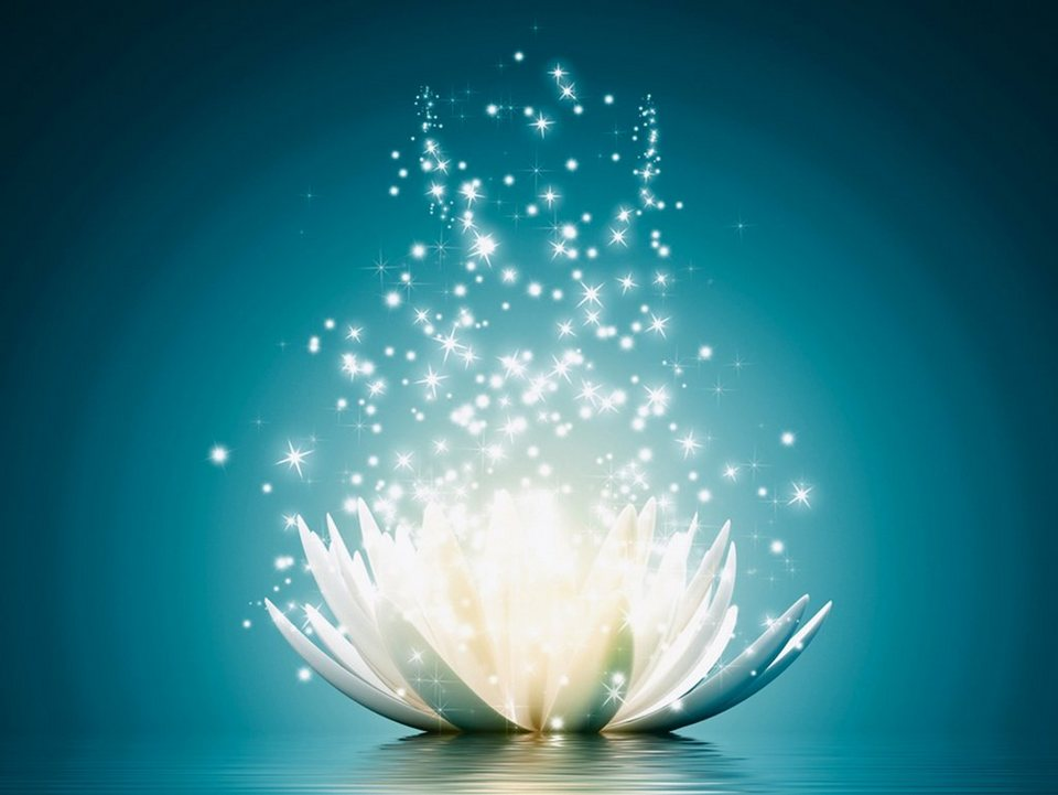 Premium collection by Home affaire Leinwandbild »V. Georgiev: Magie der Lotus-Blume«, 80/60 cm in Blau